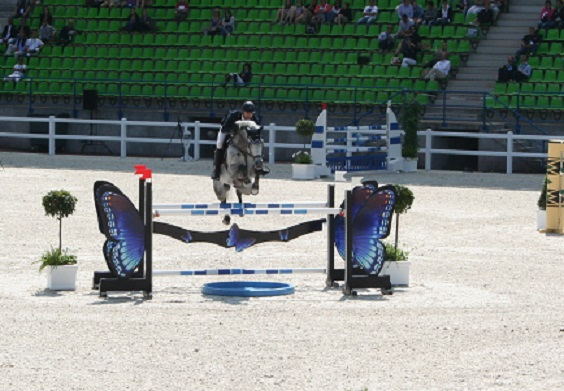 141-06-25 obstacle papillon